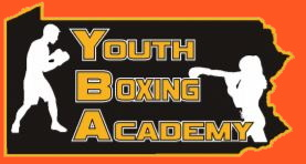 virtual youth boxing academy
